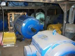 Электродвигатели 160 кВт - 3150 кВт, в наличии с хранения. - фото 2