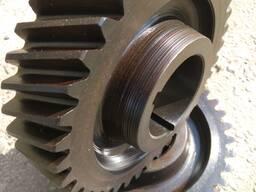 Gearwheel, gear, staft gear, toothed crown, gear box - photo 3