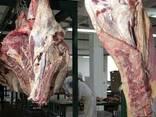 Мясо Халяль Говядина (бык) Полутуши Четверть туши - фото 4