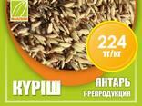 Оптом семена рис, люцерны и пшеницы - фото 5