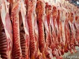 Предлагаем поставку мяса говядины и свинины Продукция из Укр