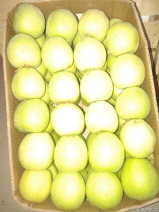 Яблоки с Азербайджана.