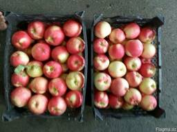 Яблока, виноград