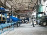 Завод по выпуску ДСП - фото 7