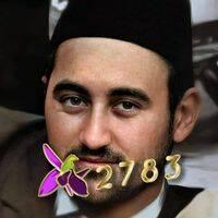 Habibov Elvin Hafiz